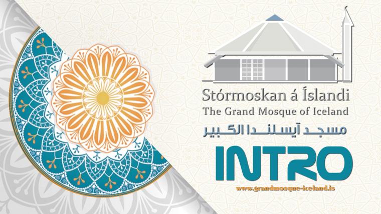 INTRO – Stórmoskan á íslands